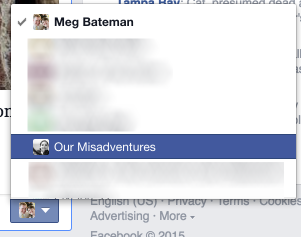 Screenshot of new Facebook feature for Page Managers